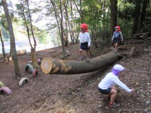 木登りジャンプ