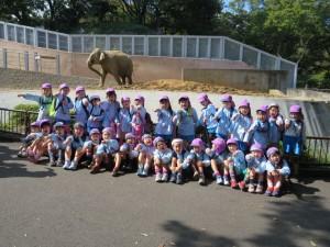 動物園遠足・芋ほり