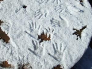 雪に大喜び!