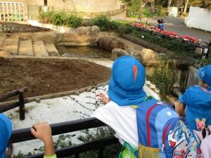 多摩動物園に行ってきました