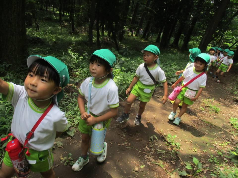 散歩(相原中央公園)