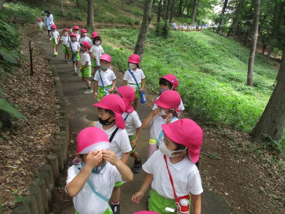 散歩「三つ目山公園」